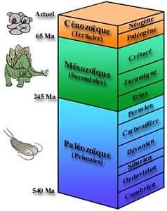 Périodes géologiques