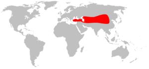 Où vivent les chameaux dans le monde ? Carte des lieux de vie des chameaux