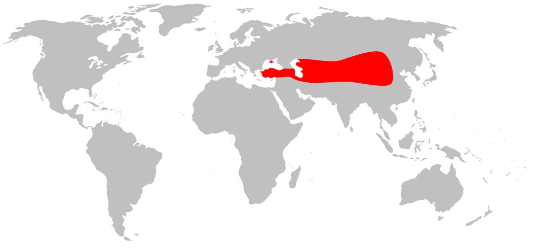 Où vivent les chameaux dans le monde ? Carte