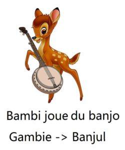 la capitale de la Gambie est Banjul