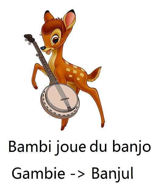 gambie_capitale_banjul_astuce