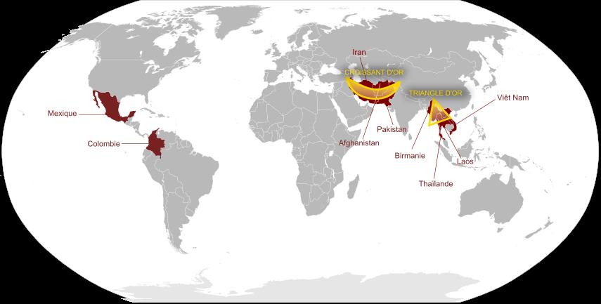 Les principaux producteurs d'opium dans le monde.