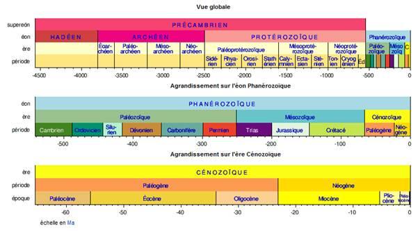l'échelle géologique temps absolu datation