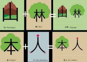 Combinaison de sinogrammes.