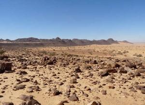 Un reg, désert de roches.