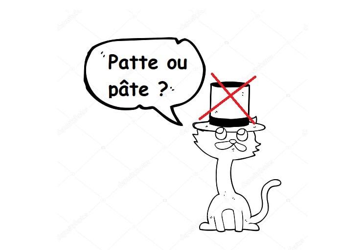 Chat avec un chapeau et quatre pattes