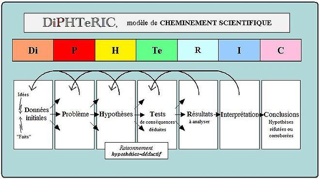 Schéma du modèle DiPHTeRIC.