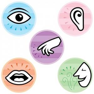 Illustration des cinq sens, de haut en bas et de gauche à droite: la vue, l'ouïe, le toucher, le goût et l'odorat.