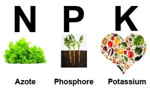 Illustration de l'engrais à base d'azote, phosphore, potassium, NPK.