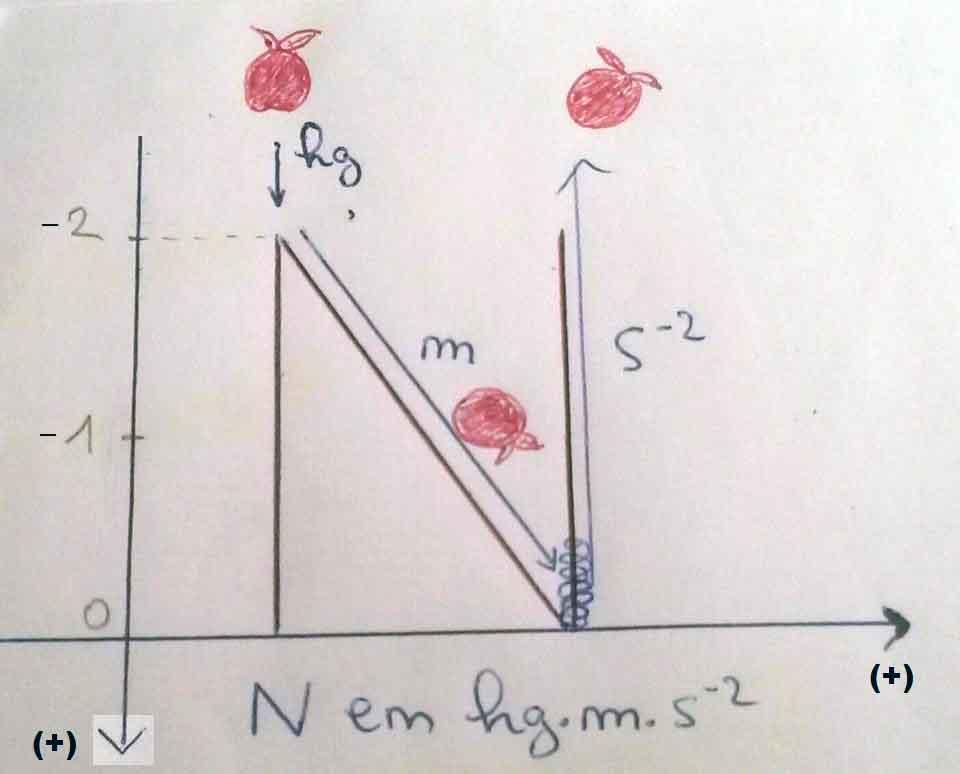 N de Newton