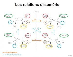 Voici un exemple d'énantiomères et de diastéréoisomères