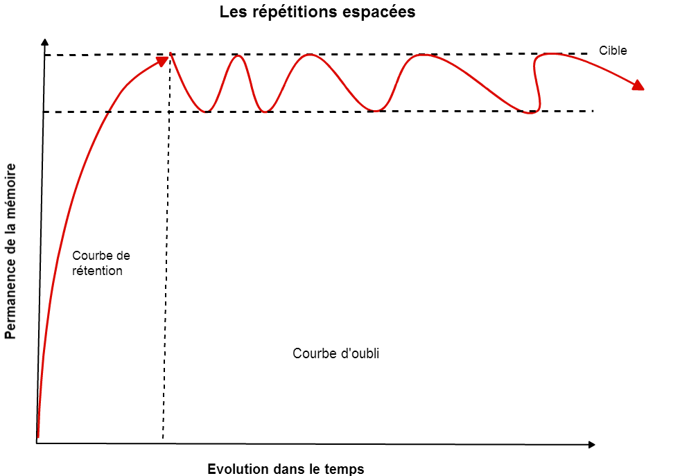 courbe-des-repetitions-espacees-et-memoire-a-long-terme