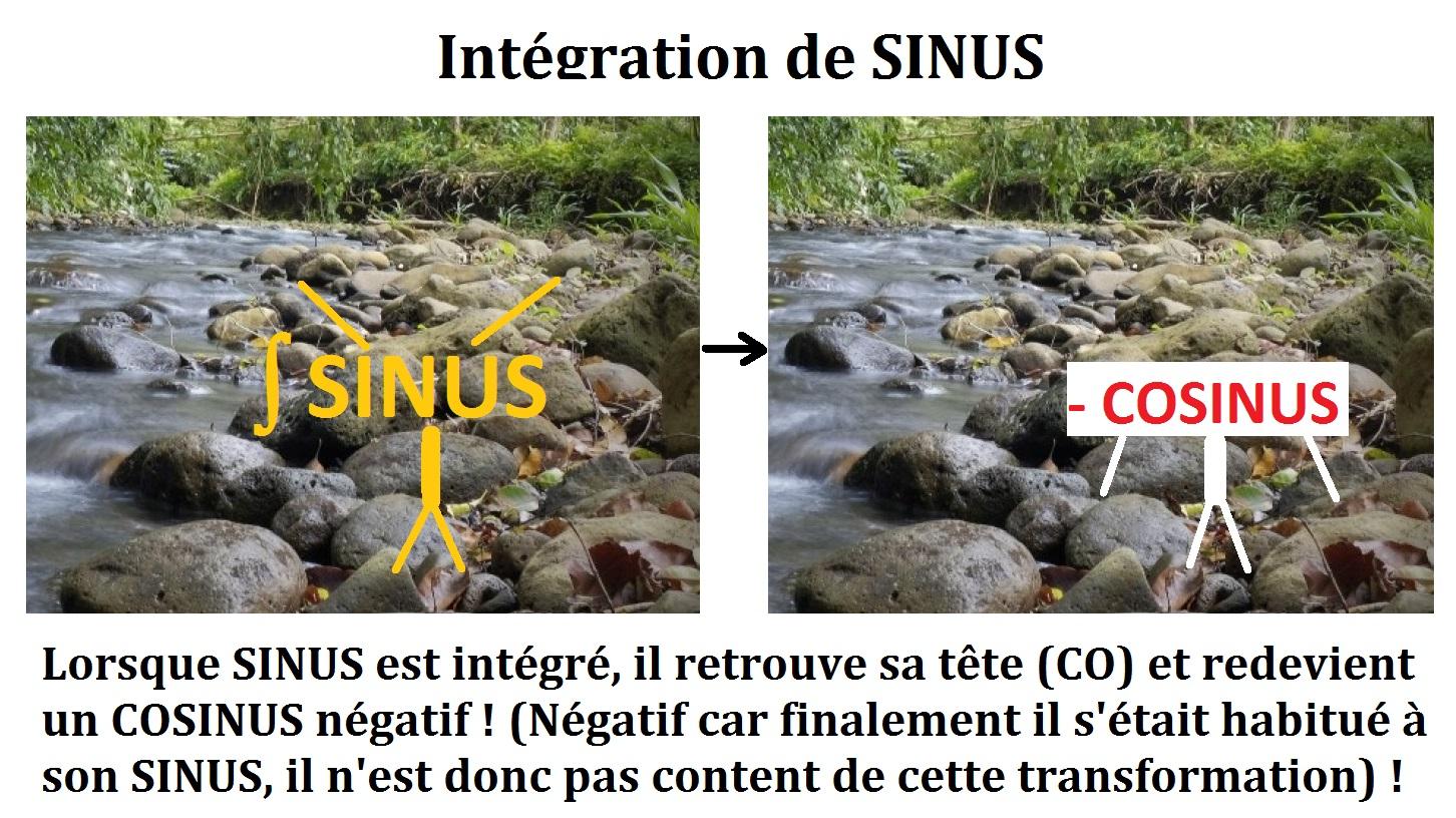 intégration_primitive_de_la_fonction_sinus_mathématique