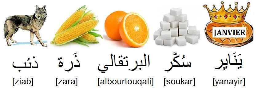 arabe_loup_ذئب_maïs_ذَرة_orange_fruit_البرتقالي_sucre_سُكَّر_janvier_يَنَايِر