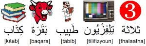Mots en arabe pour apprendre les lettres