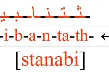 stanabi la nouvelle astuce pour mémoriser les lettres arabes