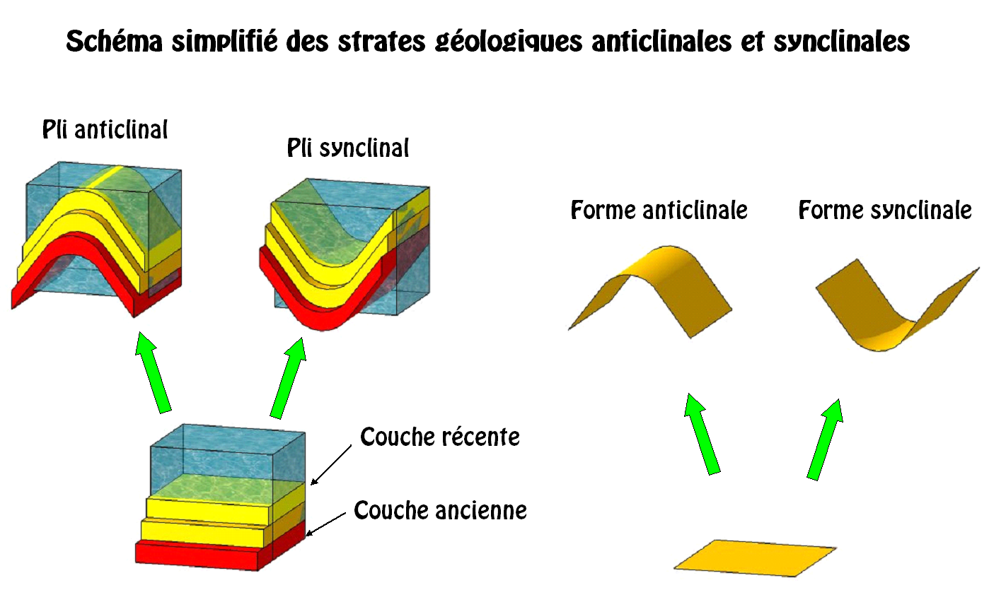 différence entre sycnlinal et anticlinal