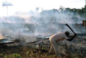 Agriculture sur brûlis au Brésil.