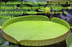 Énigme du nénuphar qui double de taille: en combien de temps recouvre-t-il la moitié de l'étang ?