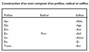 Exemple de découpage d'un mot autour du radical port, avec une variété de préfixes et de suffixes qui créent des termes différents.