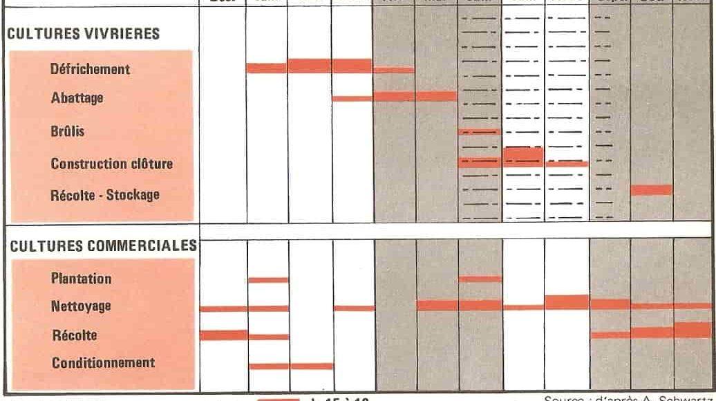 calendrier_agricole_Ziombli_forêt_dense_brûlis