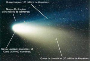 Strcture coupe schéma de la comète coma noyau poussières ion queue
