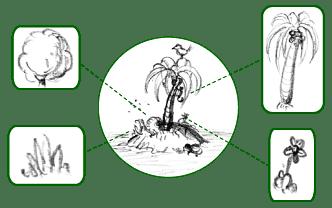 flore_plantes_champignons_algues