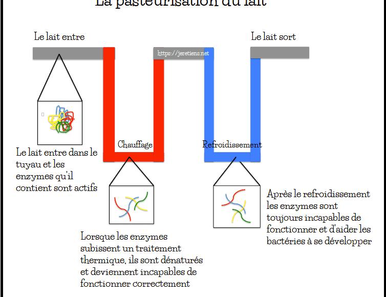 schéma_pasteurisation_lait_fonctionnement