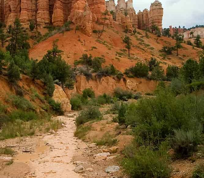 coulée_de_boue_USA_canyon