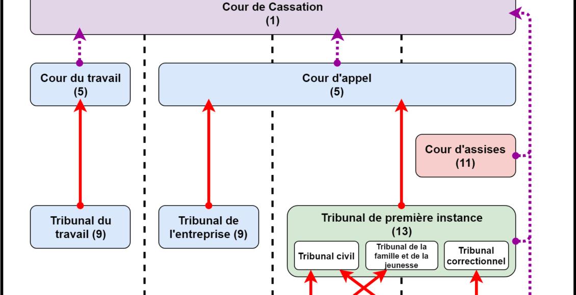 organisation_juridictions_belgique_tribunaux_police_appel_correctionnel_travail_cassation