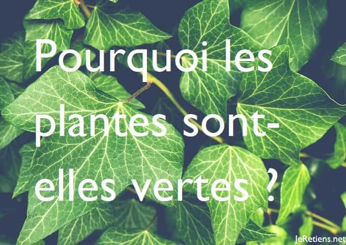 Pourquoi les plantes sont vertes ?