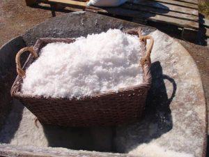 Quels sont les mots qui découlent de la famille du mot sel ?