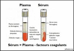 Quelle différence entre plasma et sérum ?