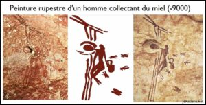 Peinture rupestre préhistorique représentant un homme qui récolte du miel