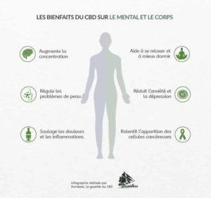 Quels sont les bienfaits du cbd sur le corps humain ?