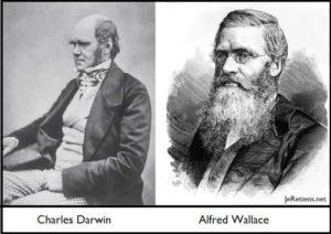 Portraits de Charles Darwin et d'Alfred Wallace, naturalistes de la sélection naturelle